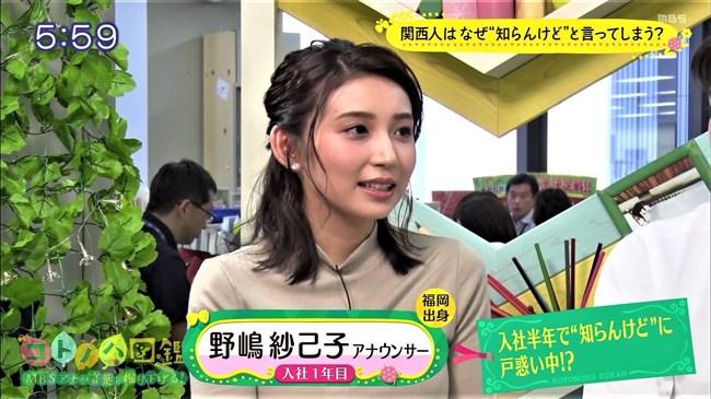 野嶋紗己子~MBSコトノハ図鑑でのニット服の胸の膨らみが悩まし過ぎて硬直!0002shikogin