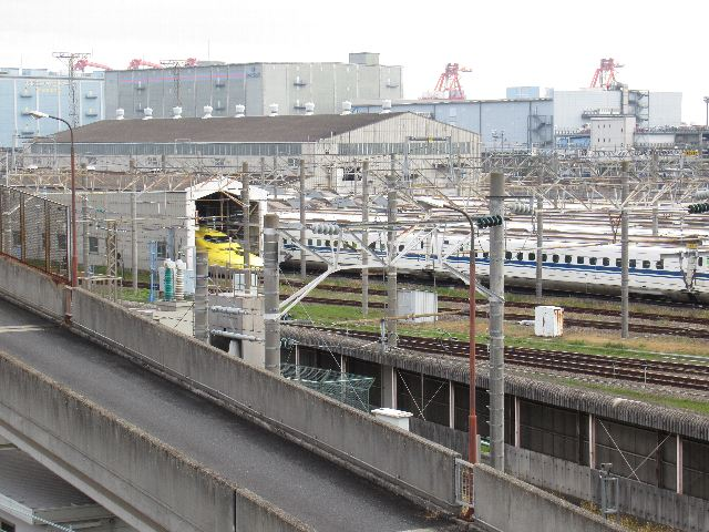 2020SAKURAx04.jpg
