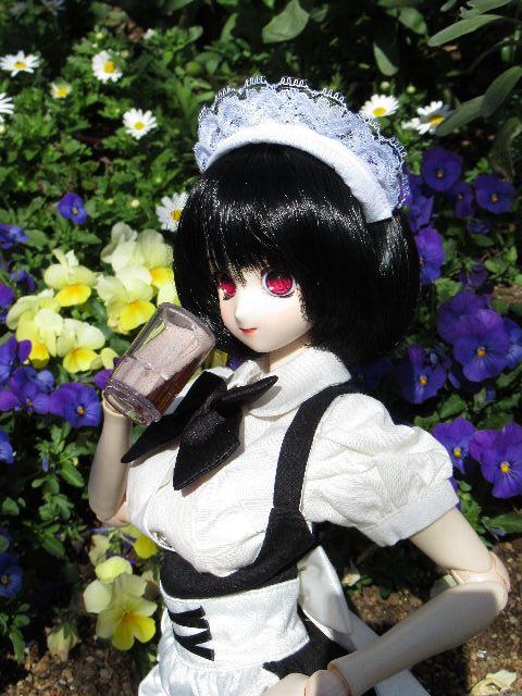 SaphRoseX46.jpg