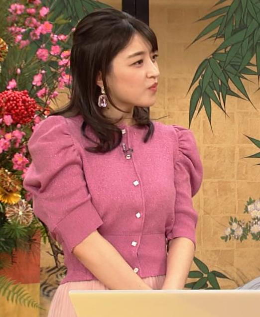 赤木野々花アナ 横乳キャプ・エロ画像