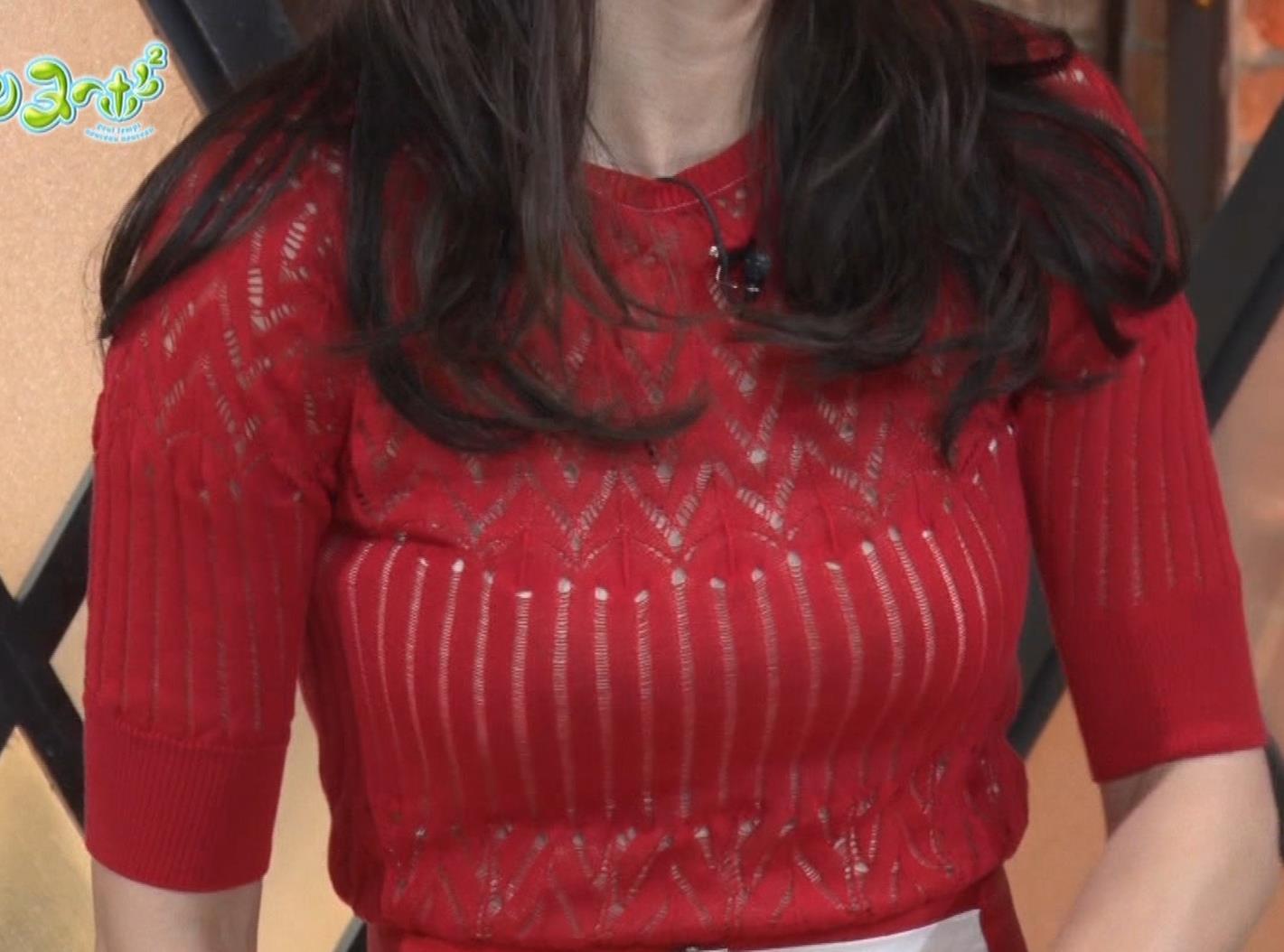 長谷川京子 ピチピチな衣装のエロ過ぎおっぱいキャプ・エロ画像7