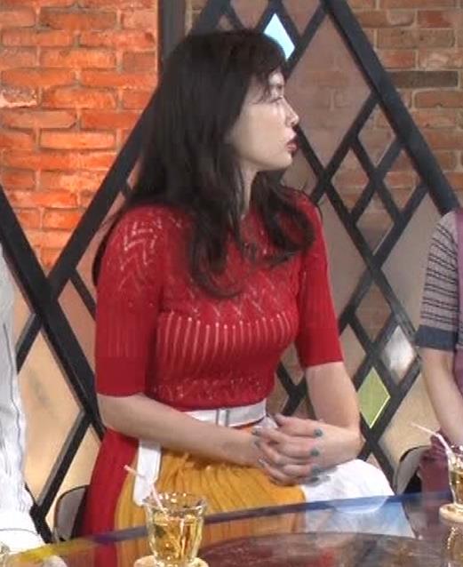 長谷川京子 ピチピチな衣装のエロ過ぎおっぱいキャプ・エロ画像8