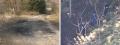 左:全焼した車が発見された現場 右:遺体が見つかった山中